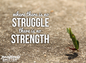 where-there-is-no-struggle-there-is-no-strength